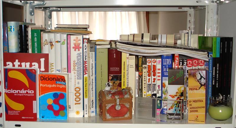 http://www.estantedelivros.com/wp-content/uploads/2010/01/estante_ananunes_4.jpg